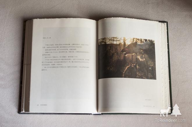 驯鹿森林书籍出版{书影1#}忧伤的驯鹿国的图片 第5张
