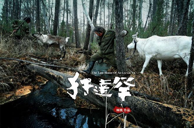驯鹿森林电影/纪录片/舞台剧大兴安岭{纪录片1#}犴达罕的图片 第1张