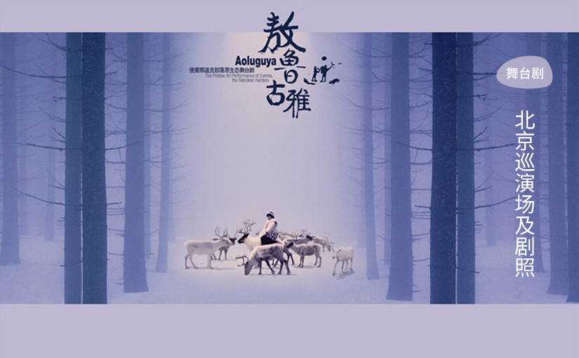 驯鹿森林电影/纪录片/舞台剧reindeer{电视节目2#}鄂温克使鹿部落作客快乐大本营的图片 第5张