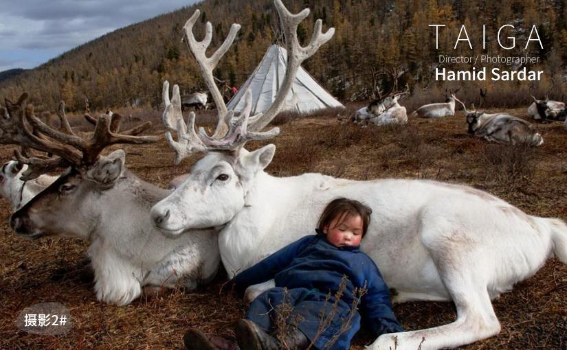 驯鹿森林电影/纪录片/舞台剧darkhad{纪录片21-4#} TAIGA 北蒙古生活 Ⅳ的图片 第4张