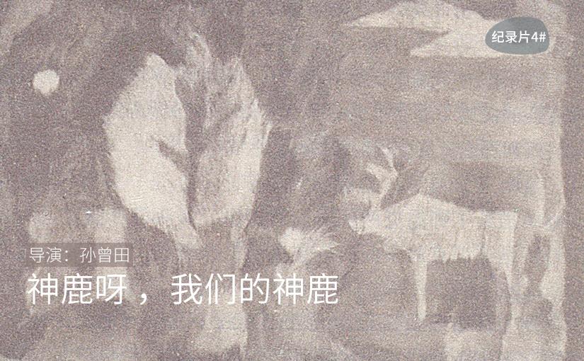 驯鹿森林书籍使鹿部落{书影10#}驯鹿角上的彩带的图片 第14张