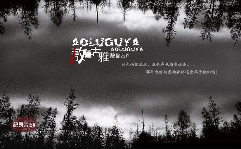 驯鹿森林电影/纪录片/舞台剧喜温{纪录片3#}雨果的假期的图片 第6张