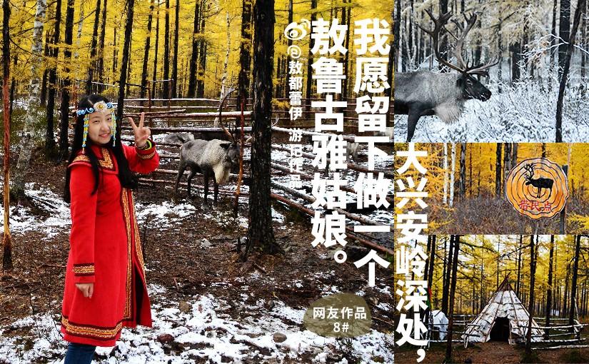 驯鹿森林游记/攻略呼伦贝尔{网友作品8#}大兴安岭深处,我愿留下做一个敖鲁古雅姑娘。的图片