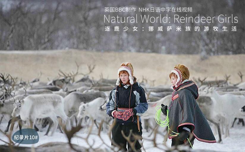 驯鹿森林电影/纪录片/舞台剧bbc{纪录片10#}逐鹿少女:挪威萨米族的游牧生活的图片