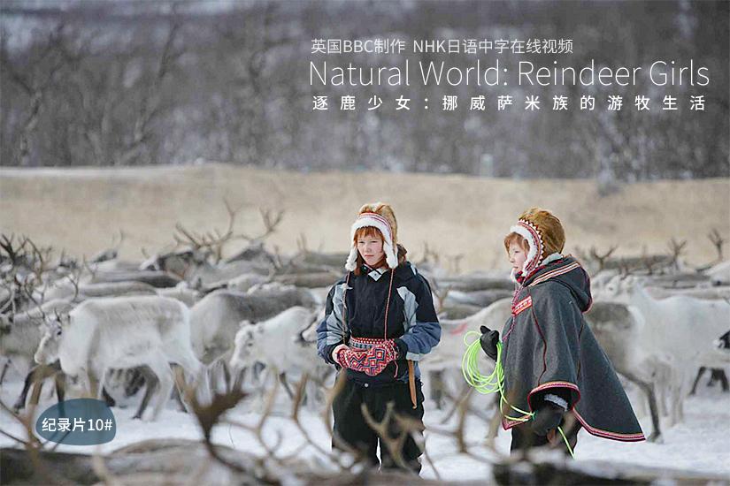 驯鹿森林网友作品分享Joik{作品分享10#} 极光下的秘密的图片 第21张