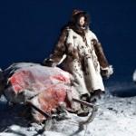 驯鹿森林图片集chukotka{摄影集11#}穿越大半个地球记录你的图片 第17张