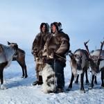 驯鹿森林图片集chukotka{摄影集11#}穿越大半个地球记录你的图片 第15张