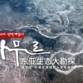 驯鹿森林电影/纪录片/舞台剧bbc{纪录片12#}BBC纪录片Wild China的图片 第8张