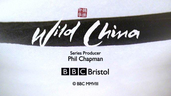 驯鹿森林电影/纪录片/舞台剧bbc{纪录片12#}BBC纪录片Wild China的图片 第2张
