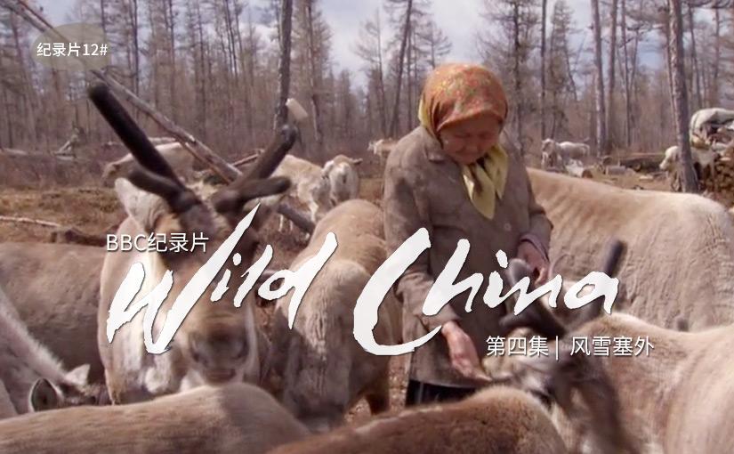 驯鹿森林电影/纪录片/舞台剧bbc{纪录片12#}BBC纪录片Wild China的图片 第1张