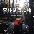 驯鹿森林电影/纪录片/舞台剧bbc{纪录片12#}BBC纪录片Wild China的图片 第9张