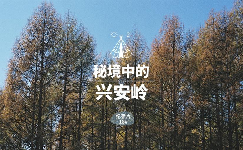 驯鹿森林电影/纪录片/舞台剧1963{纪录片18#} 秘境中的兴安岭的图片