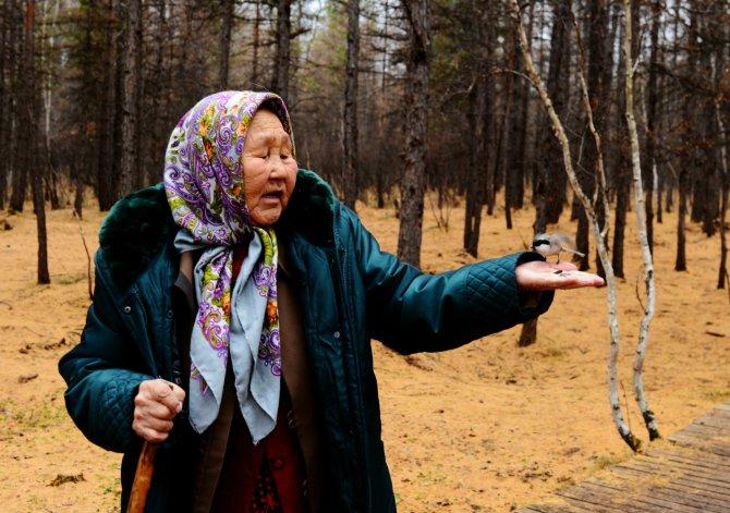 驯鹿森林书籍使鹿部落{书影10#}驯鹿角上的彩带的图片 第2张
