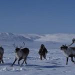 驯鹿森林电影/纪录片/舞台剧chukotka{纪录片20#} 穿越北极圈的叹息的图片 第5张