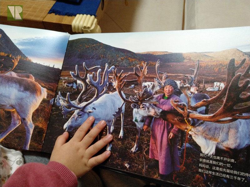 驯鹿森林书籍Tsaatan{书影12#}看见另一种童年的图片 第2张
