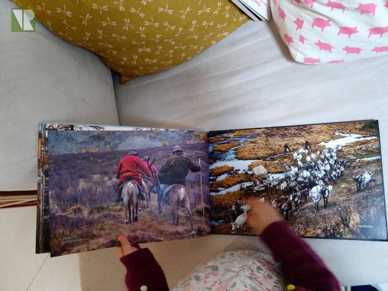 驯鹿森林书籍Tsaatan{书影12#}看见另一种童年的图片 第5张